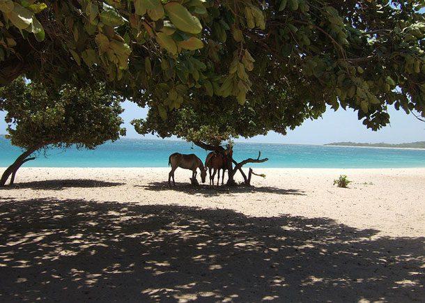 25-coolest-beaches 7