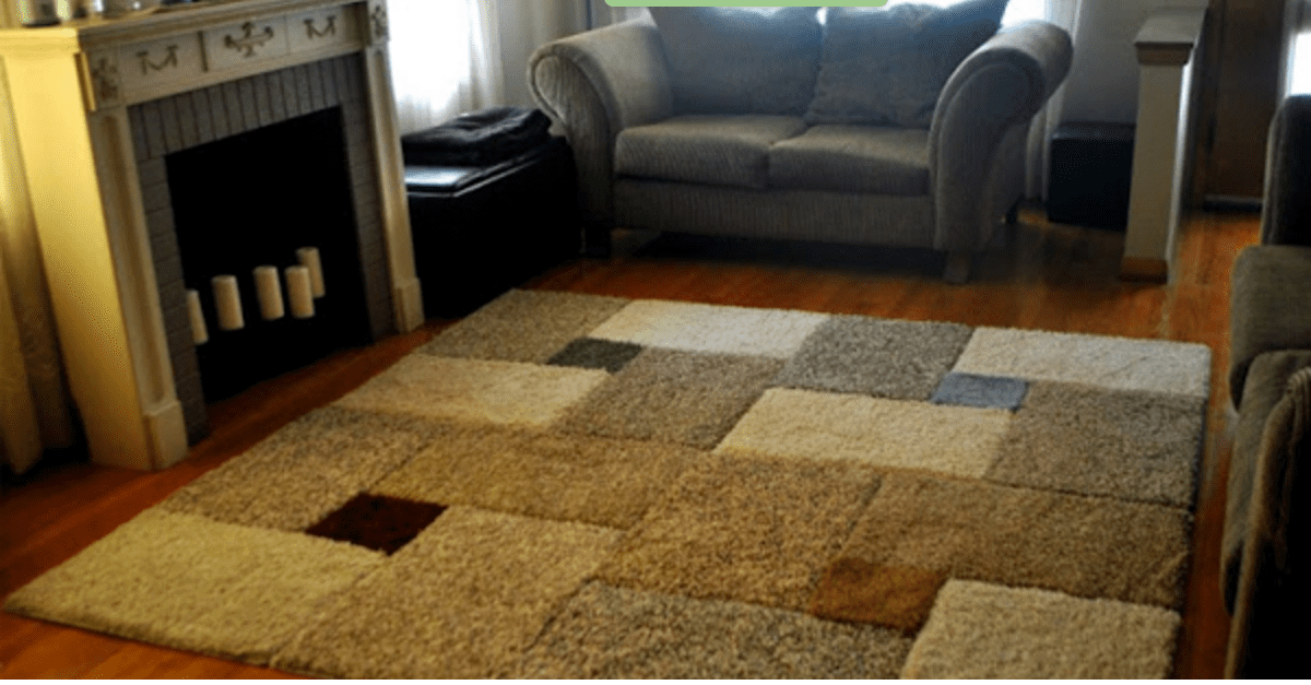 Giant Area Rug For Only 30