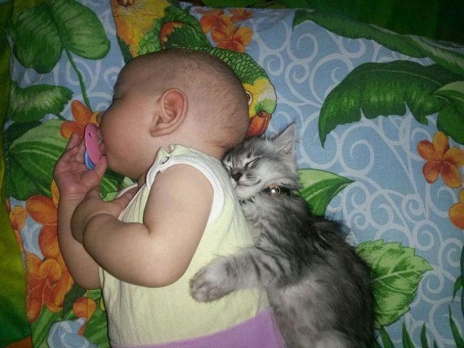 kids need pets