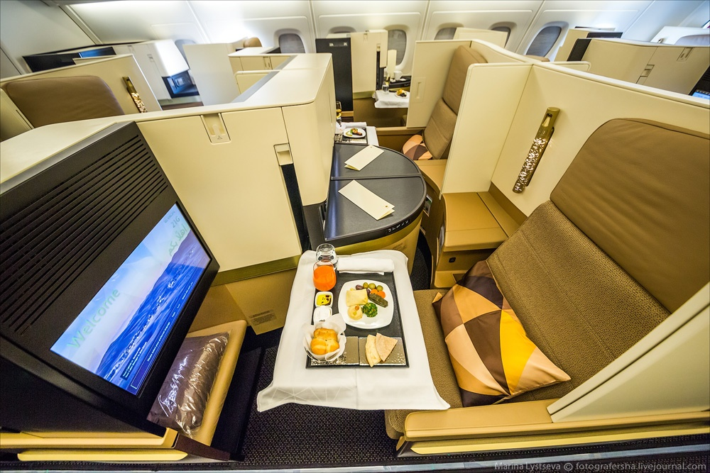 Luxurious Plane 10