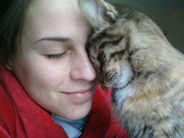 cats behaviour 3