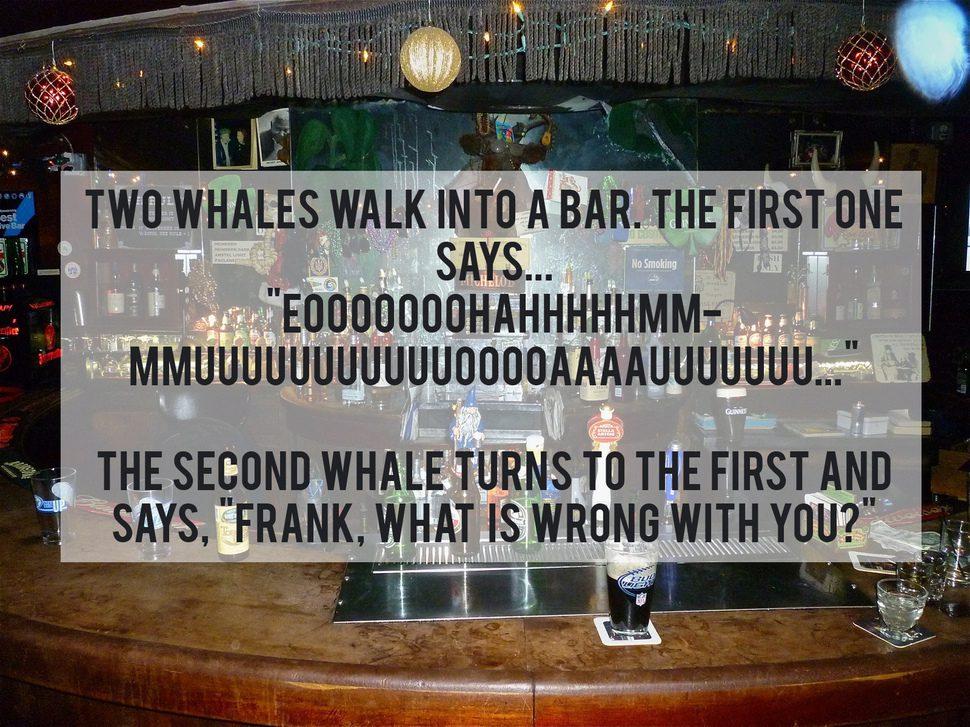 foolish jokes 9