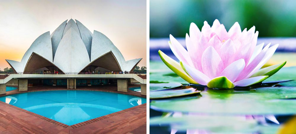 10 Nature Inspired Architectural Masterpieces