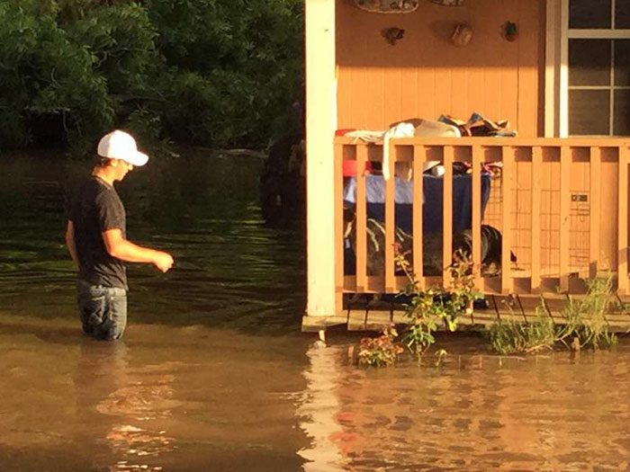 saved dogs after flood 7