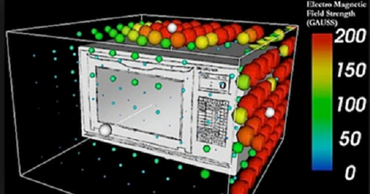 Microwaves Are Not Great For Human Health, But Here's What