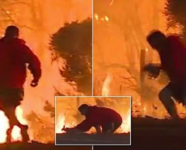 man saved rabbit from wildfire
