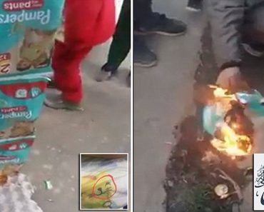 pampers nappies protest
