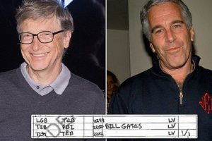 bill gates jeffrey epstein