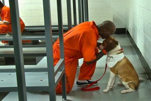prisoners with dogs
